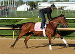 April 23, 2014 Empress of Midway gallops at Churchill Downs with rider Humberto Gomez.  She is trained by Doug O'Neill and owned by Daniel Kramer.