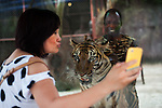 """A Chinese tourist takes a 'selfie' with the tiger and its """"handler"""", Tony Kazungu, 35, at the Sriracha Tiger Zoo, one of the most frequented attractions in Pattaya. Kazungu came over to Thailand from Mombasa, Kenya, 15 years ago to work at Thai tourist attractions first as an acrobat and now as a tiger handler. Although he is not there specifically to cater to Chinese tourists, tigers have big symbolism in China and he draws a big crowd. The tourists appear to see nothing wrong or unusual about an African man being on display in the same glassed-off cage as the tiger."""