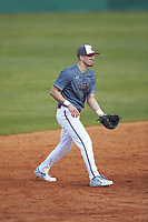 Concord Mountain Lions shortstop Anthony Stehlin (12) on defense against the Wingate Bulldogs at Ron Christopher Stadium on February 1, 2020 in Wingate, North Carolina. The Bulldogs defeated the Mountain Lions 8-0 in game one of a doubleheader. (Brian Westerholt/Four Seam Images)