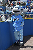Wilmington Blue Rocks mascot Rocky Bluewinkle before a game against the Myrtle Beach Pelicans on April 27, 2014 at Frawley Stadium in Wilmington, Delaware.  Myrtle Beach defeated Wilmington 5-2.  (Mike Janes/Four Seam Images)
