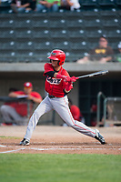 Orem Owlz right fielder Rayneldy Rosario (12) at bat during a Pioneer League game against the Missoula Osprey at Ogren Park Allegiance Field on August 19, 2018 in Missoula, Montana. The Missoula Osprey defeated the Orem Owlz by a score of 8-0. (Zachary Lucy/Four Seam Images)