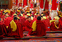 Buddhist Gelugpa monks at daily prayer, wear ceremonial fringed Yellow Hats on their shoulders, Drepung monastery, Lhasa, Tibet, China.