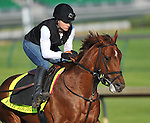 April 29, 2015: Far Right, trained by Ron Moquett, exercises in preparation for the 141st Kentucky Derby at Churchill Downs in Louisville, Kentucky. Scott Serio/CSM