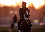 OCT 25: Breeders' Cup Juvenile Fillies entrant K P Dreamin, trained by Jeff Mullins,  works under Rueben Fuentes at Santa Anita Park in Arcadia, California on Oct 25, 2019. Evers/Eclipse Sportswire/Breeders' Cup