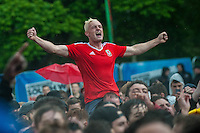 Thursday  16 June 2016<br /> Pictured: Fans celebrate ahead of the England v Wales Euro 2016 match in Lens, France<br /> Re: Wales Fans at the fanzone in Cardiff, Wales UK