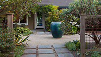 Accent pot centered in gravel entry courtyard seen past stepping stone path into Kuzma Garden with Arctostaphylos 'Warren Roberts' bottom left, A. viscida inside fence; Portland Oregon. Photo MUST be credited as Design by Sean Hogan.