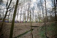 peloton through the La Houppe forrest<br /> <br /> 58th E3 Harelbeke 2015