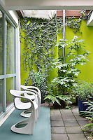 A contemporary courtyard garden. Two white chairs are placed on small blue raised step. A variety of foliage plants are arranged against a green wall.