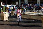 HALLANDALE BEACH, FL - JANUARY 21: Scenes from Gulfstream Park. (Photo by Arron Haggart/Eclipse Sportswire/Getty Images