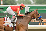1-AUG-10: Lookin At Lucky, Martin Garcia up, wins the 2010 IZOD Haskell Invitational.