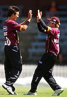 090117 Cricket - Wellington Firebirds v Northern Knights
