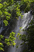 France, île de la Réunion, Parc national de La Réunion, classé Patrimoine Mondial de l'UNESCO, Sainte Rose, Anse des Cascades, les  cascades //France, Reunion island (French overseas department), Parc National de La Reunion (Reunion National Park), listed as World Heritage by UNESCO, Sainte Rose, Anse des Cascades, the  waterfall