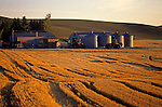 Grain silo for crop storage with tractors and farm equipment Eastern Washington State USA