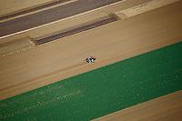 Europe/France/Pays de la Loire/49/Maine-et-Loire/Env de Saumur: Champs et cultures, labour au tracteur -  vue aérienne