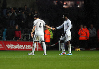 Wednesday, 01 January 2014<br /> Pictured: (L-R) Chico Flores, Wilfried Bony.<br /> Re: Barclay's Premier League, Swansea City FC v Manchester City at the Liberty Stadium, south Wales.