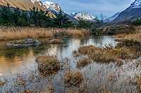 Fall landscape of first ice on tundra pond Chugach Mountains in background. Chugach State Park. Southcentral, Alaska<br /> <br /> Photo by Jeff Schultz/SchultzPhoto.com  (C) 2018  ALL RIGHTS RESERVED