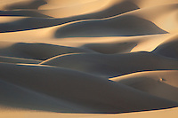 An interplay of soft diffused light and shadows on this section of Death Valley's Eureka Dunes.