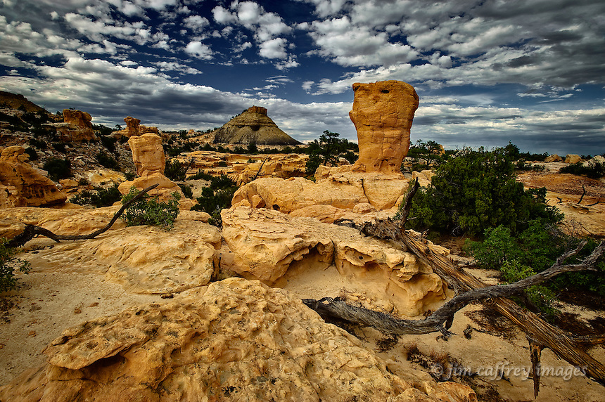 A group of strange sandstone formations in a remote area of the Ojito wilderness.