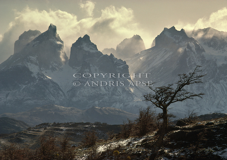 Torres del Paine National Park. Southern Chile.