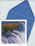 """Bear in waterfall<br /> 6.5"""" x 6.5"""" Exceptional, framing-quality square card with color-coordinated envelope. Embossed with signature, printed on watercolor paper. Watermark does not appear on product."""