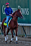 LOUISVILLE, KY - APRIL 30: Promises Fulfilled, trained by Dale Romans, exercises in preparation for the Kentucky Derby at Churchill Downs on April 30, 2018 in Louisville, Kentucky. (Photo by John Voorhees/Eclipse Sportswire/Getty Images)