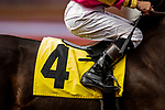 AUG 11: Boot details at The Del Mar Thoroughbred Club in Del Mar, California on August 11, 2019. Evers/Eclipse Sportswire/CSM