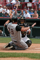 Erie Seawolves Danilo Sanchez tags out Sean Casey #29 sliding in to home during an Eastern League game at Jerry Uht Park on May 28, 2006 in Erie, Pennsylvania.  (Mike Janes/Four Seam Images)