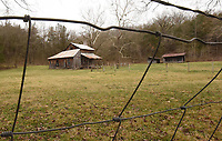 The home, barn and outbuildings of the Parker-Hickman farmstead, seen here on March 12 2021, can be explored by visitors to the Buffalo National River. The farmstead is north of Jasper, one-half mile west of Erbie campground.<br />(NWA Democrat-Gazette/Flip Putthoff)