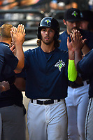 Right fielder Gene Cone (9) of the Columbia Fireflies is greeted in the dugout after scoring a run in a game against the Lexington Legends on Friday, April 21, 2017, at Spirit Communications Park in Columbia, South Carolina. Columbia won, 5-0.(Tom Priddy/Four Seam Images)