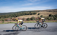 yellow jersey / GC leader Primoz Roglic (SVK/Jumbo-Visma) & Tom Dumoulin (NED/Jumbo-Visma) descending the Col du Béal<br /> <br /> Stage 14 from Clermont-Ferrand to Lyon (194km)<br /> <br /> 107th Tour de France 2020 (2.UWT)<br /> (the 'postponed edition' held in september)<br /> <br /> ©kramon