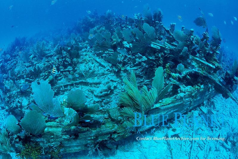 Civil War wreck, Atlantic Ocean