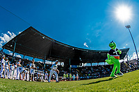 20 June 2021: Vermont Lake Monsters Mascot Champ leads the team onto the field to face the Westfield Starfires at Centennial Field in Burlington, Vermont. The Lake Monsters fell to the Starfires 10-2 at Centennial Field, in Burlington, Vermont. Mandatory Credit: Ed Wolfstein Photo *** RAW (NEF) Image File Available ***