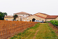 Chateau la Conseillante, in the foreground a vineyard that has just been newly planted  Pomerol  Bordeaux Gironde Aquitaine France