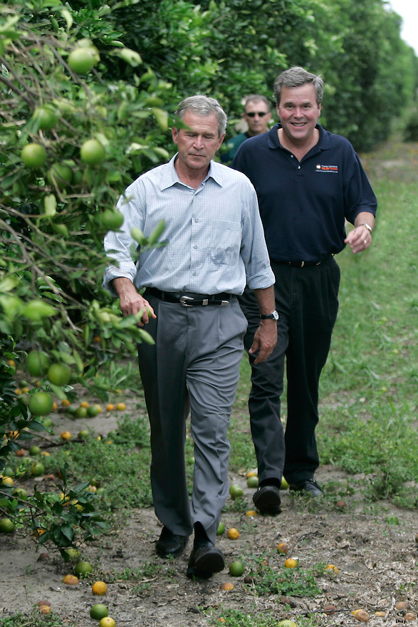 President George W. Bush is followed by his bother Florida Governor Jeb Bush as they tour a hurricane damaged orange grove in Lake Wales, FL.