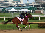 April 18, 2015 Kentucky Derby and Oaks contenders at Churchill Downs. Puca worked in company with Japan, 4F in :48.20. Owner Donegal Racing, trainer William Mott.  By Big Brown x Boat's Ghost (Silver Ghost) ©Mary M. Meek/ESW/CSM