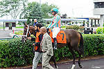 Conquest Harlanate(7) with Jockey Patrick Husbands aboard at  the Natalma Stakes at Woodbine Race Course in Toronto, Canada on September 13, 2014 with Jockey Patrick Husbands aboard.