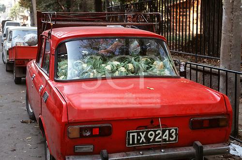 Sofia, Bulgaria. Back of an old red car full of cauliflower.