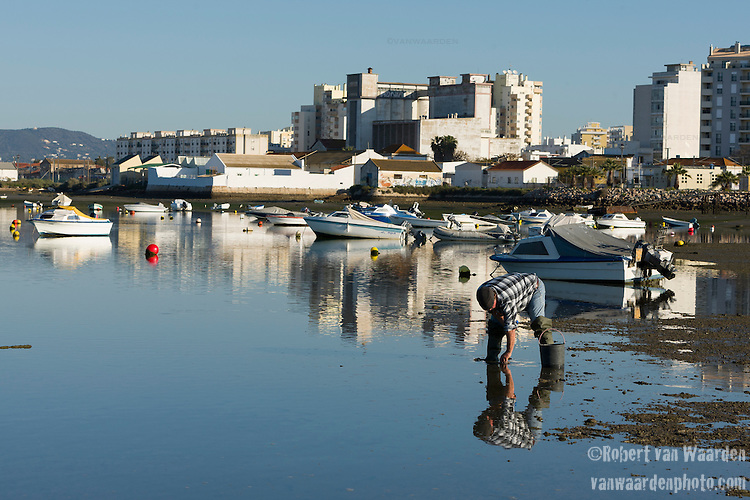 A man harvest shellfish during low tide near Faro, the capital city of the Algarve region of Portugal.