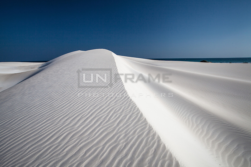 The hypnotic white sands of Aomak stretch for miles along Socotra's southern coast, creating surreal contrasts with dunes plunging into the azure blue ocean. The winds constantly reshape the contours of the sand, making each view unique. Walking along the wild shore, bones of big marine mammals and tortoises can be found stranded in the sand.