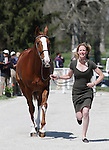 April 23, 2014: Bellaney Rock and Selena O'Hanlon during the first horse inspection at the Rolex Three Day Event in Lexington, KY at the Kentucky Horse Park.  Candice Chavez/ESW/CSM
