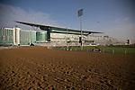 MAR 27,2015:Track scene at Meydan in Dubai,UAE. Kazushi Ishida/ESW/CSM