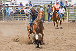 A cowboy gets a loop around the neck of a calf during roping at the Jordan Valley Big Loop Rodeo, Ore.
