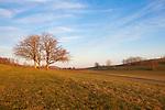 Europa, DEU, Deutschland, Baden Wuerttemberg, Schwaebische Alb, Melchingen, Morgenstimmung bei Sonnenaufgang, Baeume, Typische Landschaft, Natur, Umwelt, Landschaft, Jahreszeiten, Stimmungen, Landschaftsfotografie, Landschaften, Landschaftsphoto, Landschaftsphotographie, Wetter, Wetterelemente, Wetterlage, Wetterkunde, Witterung, Witterungsbedingungen, Wettererscheinungen, Meteorologie, Wettervorhersage, <br /> <br /> [Fuer die Nutzung gelten die jeweils gueltigen Allgemeinen Liefer-und Geschaeftsbedingungen. Nutzung nur gegen Verwendungsmeldung und Nachweis. Download der AGB unter http://www.image-box.com oder werden auf Anfrage zugesendet. Freigabe ist vorher erforderlich. Jede Nutzung des Fotos ist honorarpflichtig gemaess derzeit gueltiger MFM Liste - Kontakt, Uwe Schmid-Fotografie, Duisburg, Tel. (+49).2065.677997, ..archiv@image-box.com, www.image-box.com]