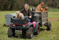 FAO JANET TOMLINSON, DAILY MAIL PICTURE DESK<br />Pictured: Charlotte Lewis on a quad bike joined by some of the dogs Wednesday 23 November 2016<br />Re: The Dog House in the village of Talog, Carmarthenshire, Wales, UK