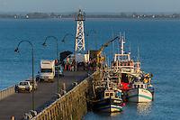France, Ille-et-Vilaine (35), côte d'émeraude, Cancale, Port de Pêche de la Houle// France, Ille et Vilaine, cote d'emeraude (Emerald Coast), Cancale: La Houle Fishing port