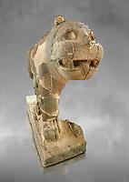 Pictures & images of the South Gate Hittite sculpture statue of a Lion. 8th century BC. Karatepe Aslantas Open-Air Museum (Karatepe-Aslantaş Açık Hava Müzesi), Osmaniye Province, Turkey. Against grey art background