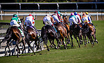 Dank ridden by Ryan Moore wins the Breeders' Cup Filly and Mare Turf on November 2, 2013 at Santa Anita Park in Arcadia, California during the 30th running of the Breeders' Cup.(Alex Evers/ Eclipse Sportswire)