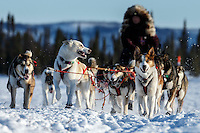 Michelle Phillips team on the trail just prior to the Cripple checkpoint on Thursday March 10 during Iditarod 2016.  Alaska.    <br /> <br /> Photo by Jeff Schultz (C) 2016  ALL RIGHTS RESERVED