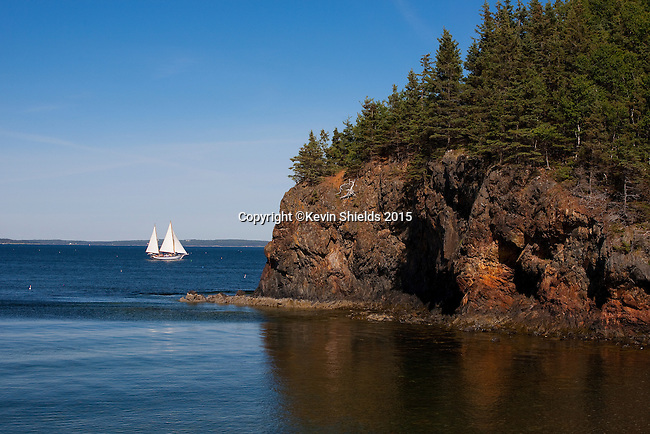 View of Owls Head with passing sailboat, Owls Head, Maine, USA
