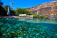 A woman jumping into the water near the Captain Cook Monument at Kealakekua Bay, Big Island